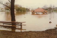 1980_lindo_bench