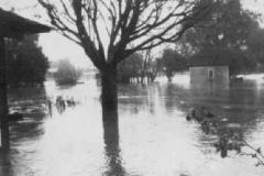 1927_feb16_flooded_farm