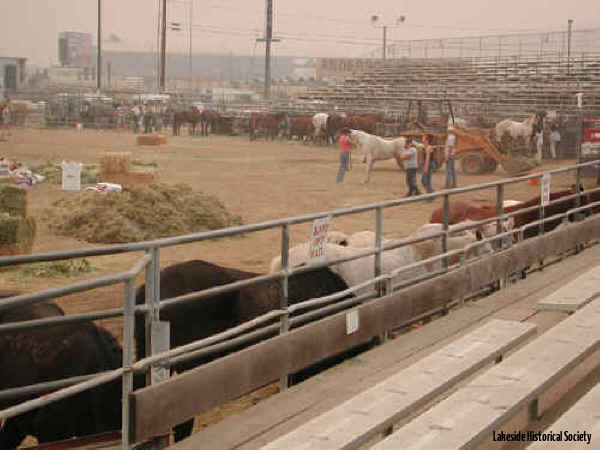 10 27, 2003 Rodeo grounds