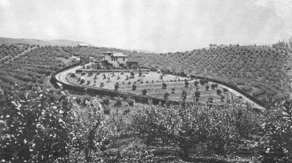 Lemon Crest Ranch c.1901